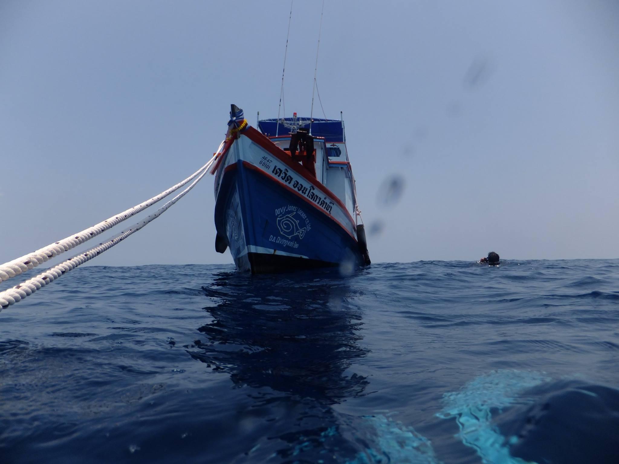 DJL Tech boat