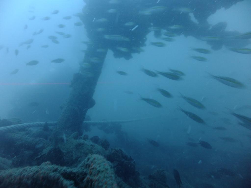 Thailand wreck dives